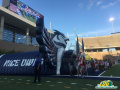 Custom Sports Inflatables Owl Tunnel
