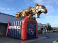 Custom Inflatable Tiger Mascot Entry