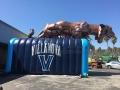 Inflatable Villanova Wildcat