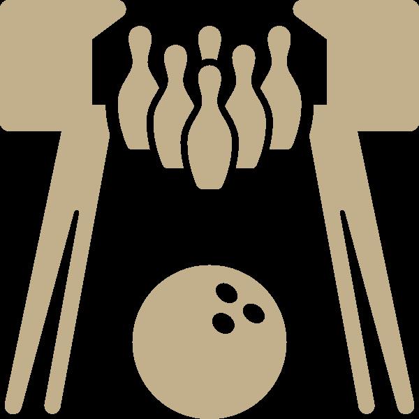 Bowling Alley Lane Icon