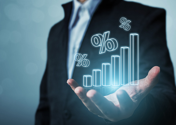 Favorite Dividend Stocks Second Half of 2019