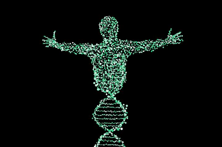 seattle-genetics-inc-stock