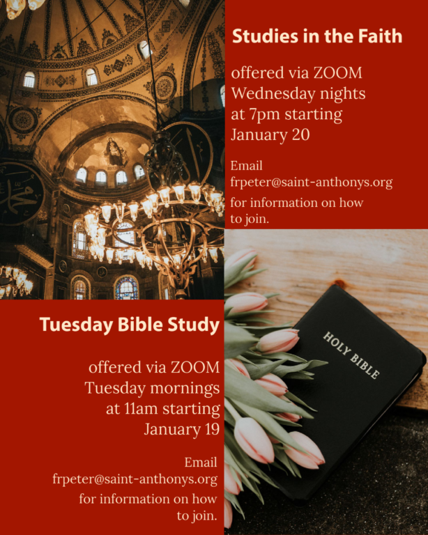 studieson zoom updated for january