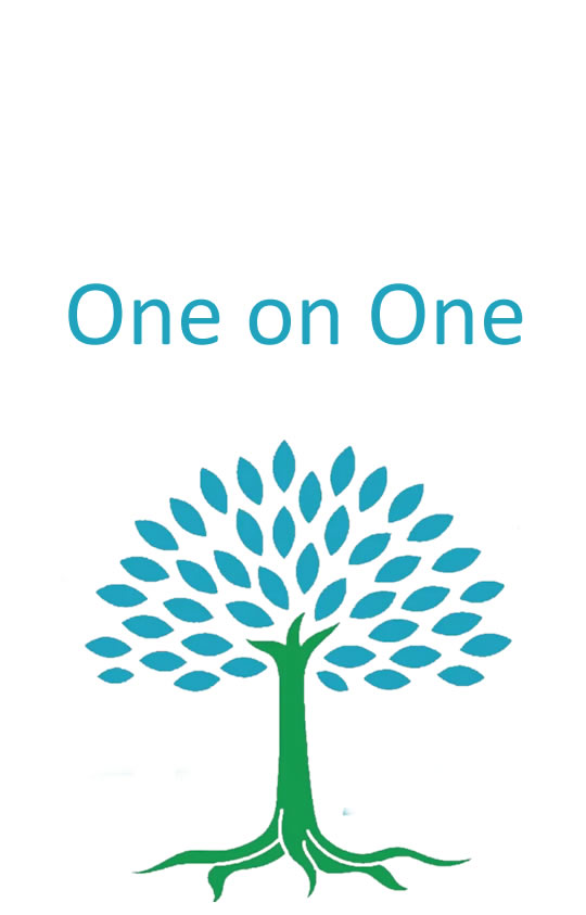 one on one life coaching erica gifford mills