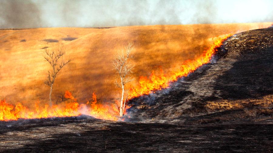 prairie-burning