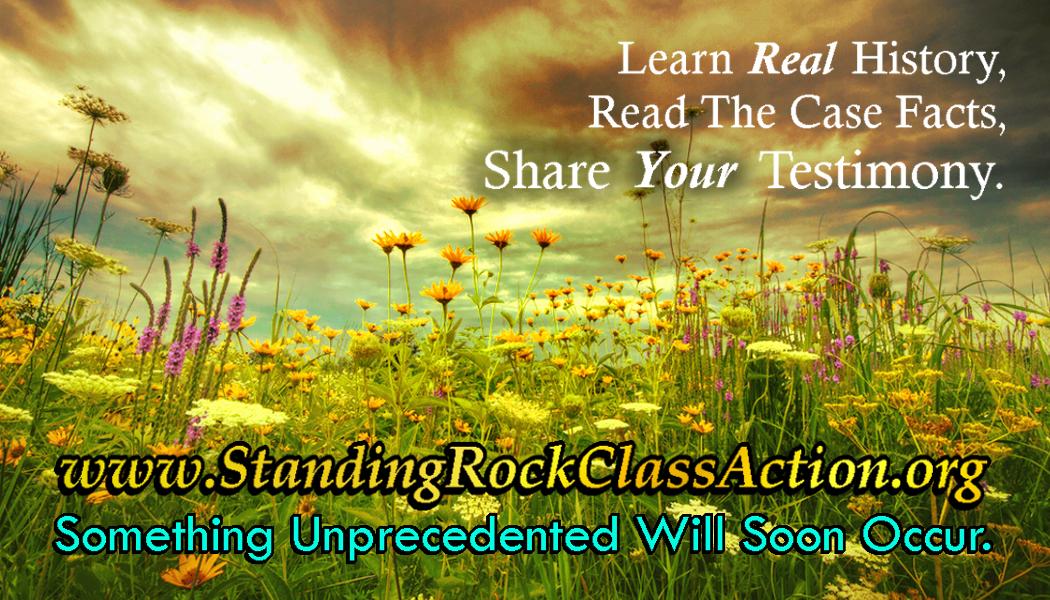 standingrockclassaction-card-b