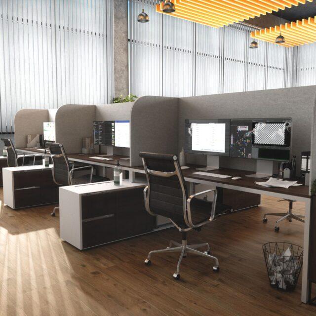 Acoufelt Desks with Dividers 2