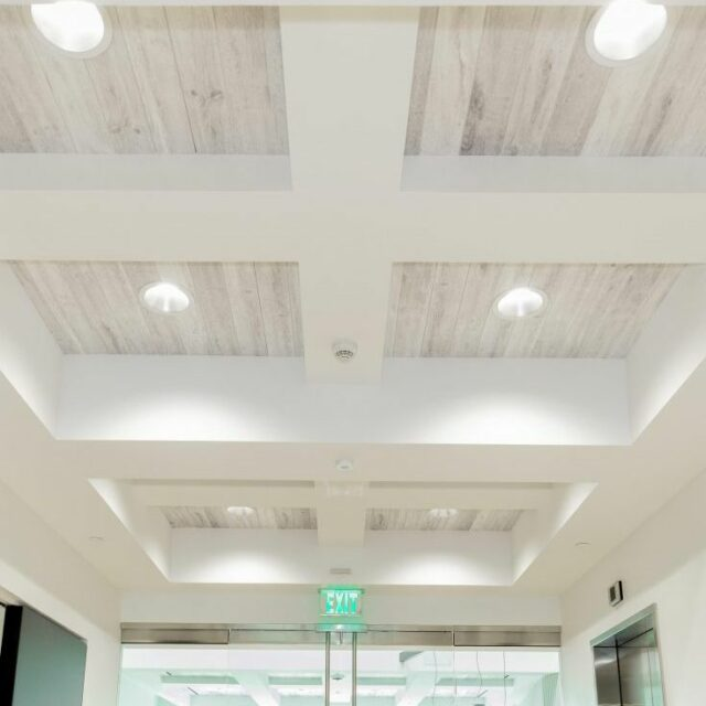 Ceiling WoodBeQuiet (2)