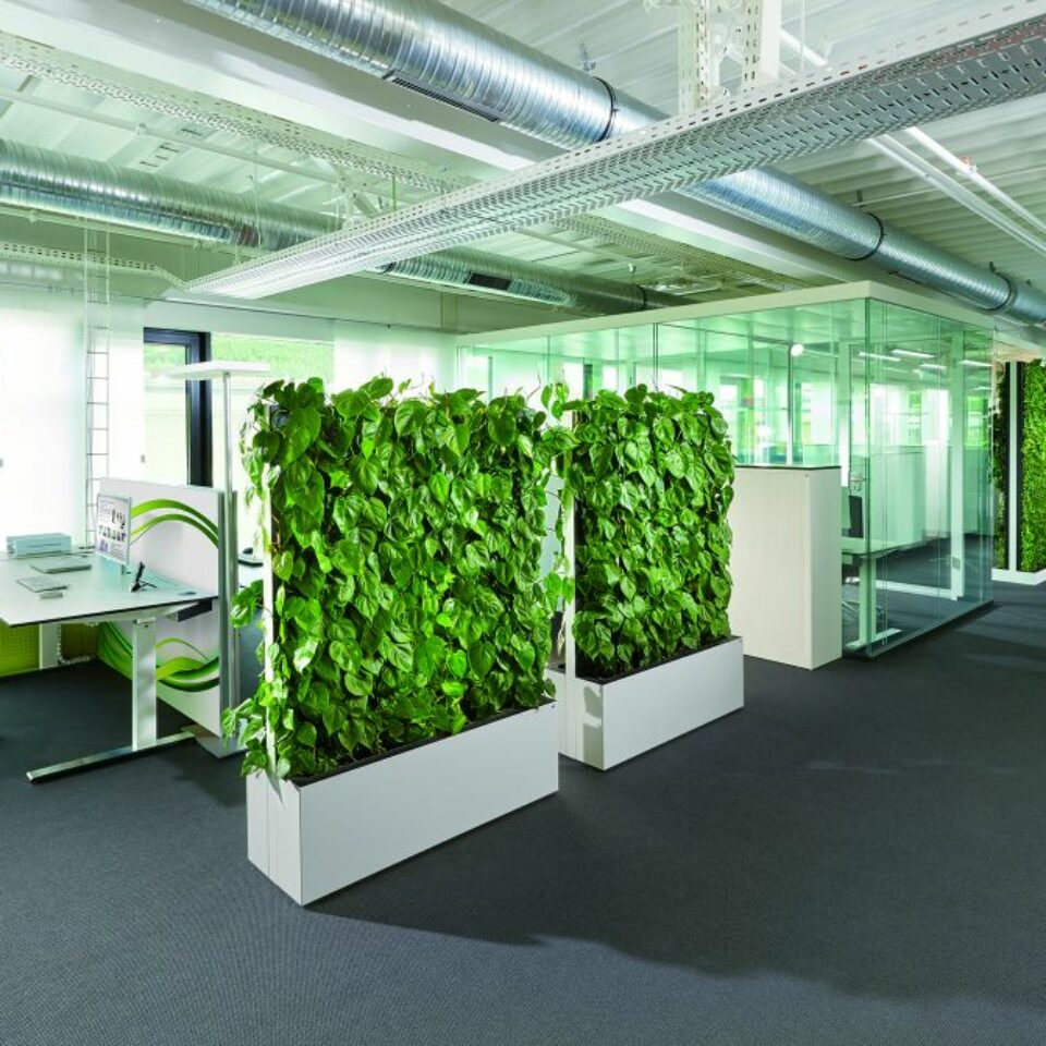 Climate Walls (1)