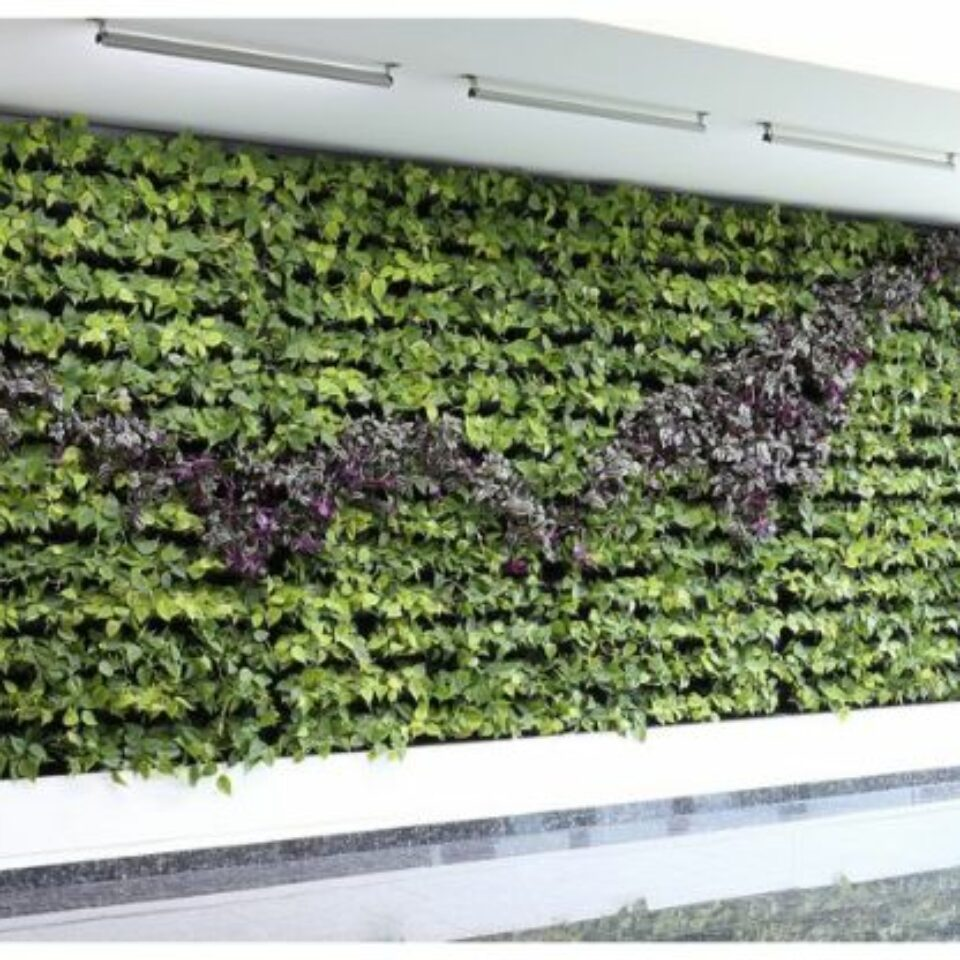 Climate Walls (4)