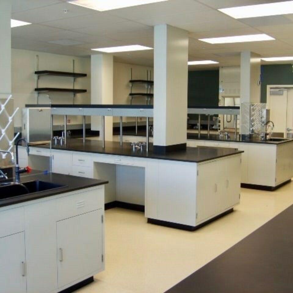 Lab Casework (1)