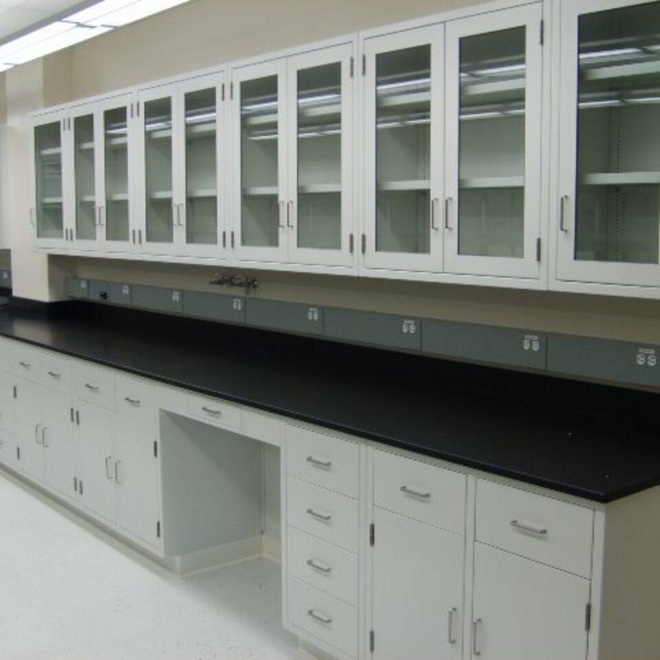 Lab Casework (2)
