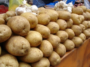 Potato and garlic for skordalia