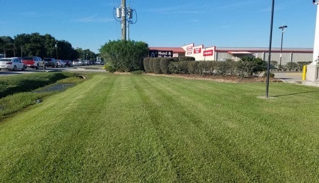 Tender Care Lawn Services | Lawn Care And Landscape Maintenance For Businesses