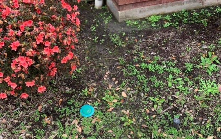 Tender Care Lawn Care Services | Landscaping Companies in Lake Charles LA can help with weed control