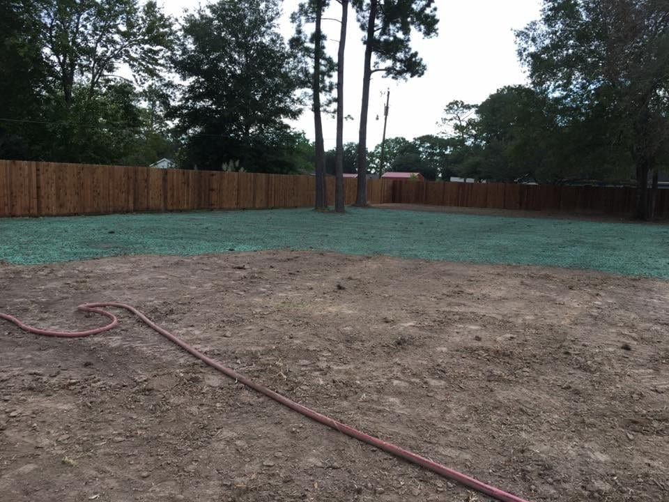 Learn about hydroseeding from our lawn care services team