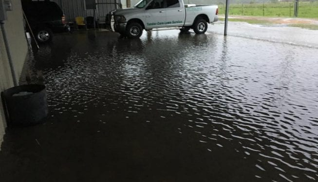 Tender Care Lawn Services   Custom Drainage Solutions - Water Pooling