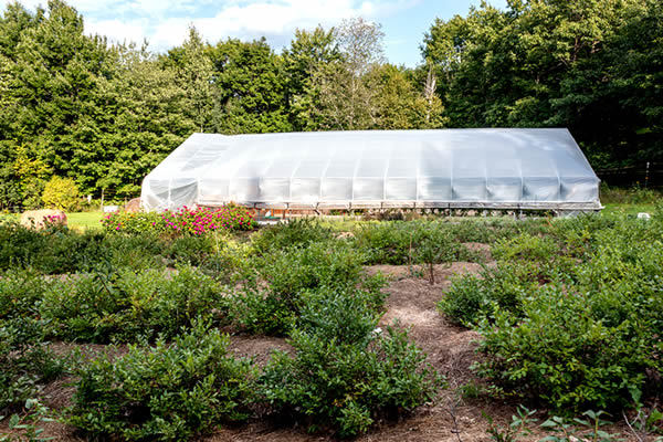 silver-sage-farm-and-flowers-greenhouse-building