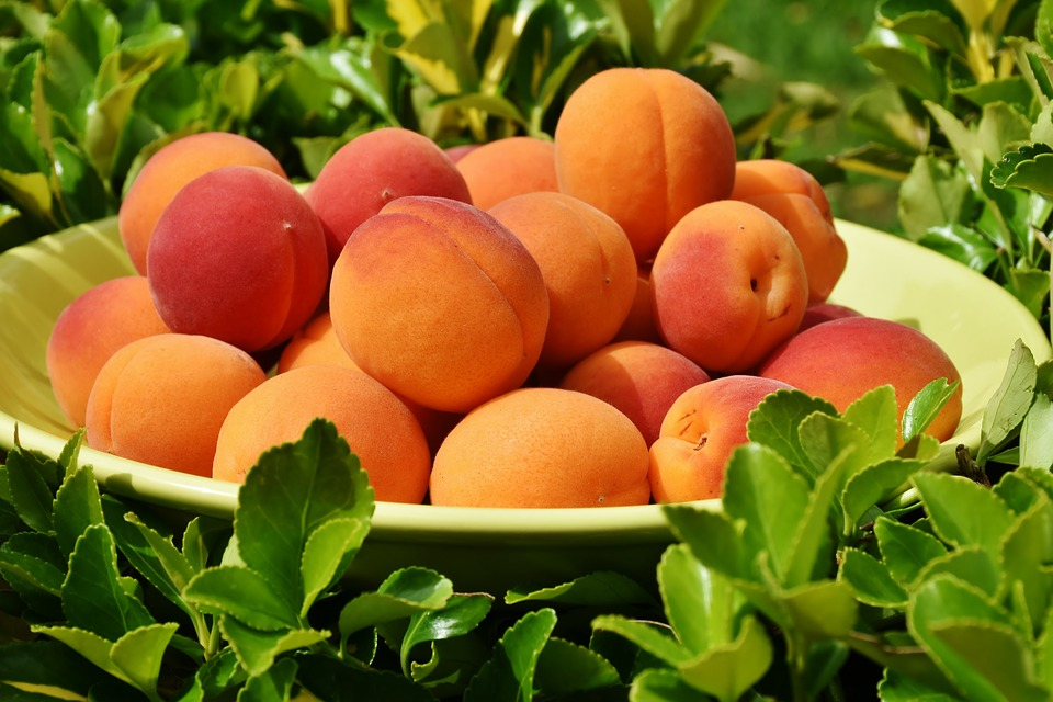 Peach orbs meaning