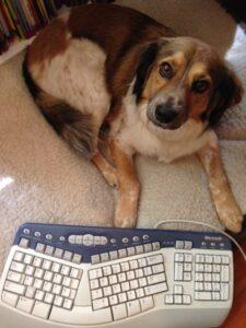 Oliver-keyboard