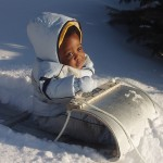 baby in a snowsuit on a sled