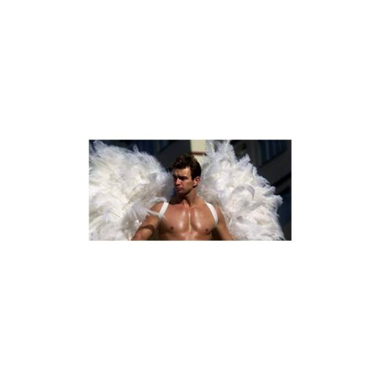 Anteros Empowerment - Greek God of Requited Love - Includes a free 50 word psychic reading