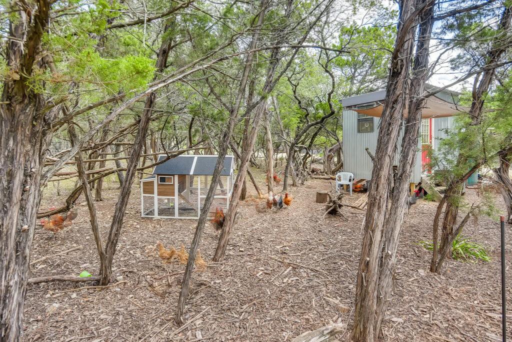 9200 McMeans Trail Austin TX-large-007-007-Back Yard-1500x1000-72dpi