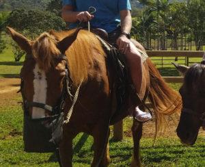 Dude-Jellies-Horseback-Web
