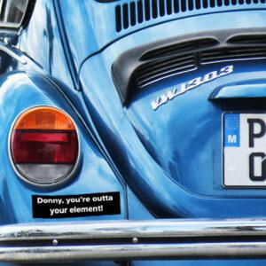 Lebowski Bumper Sticker - Donny You're Outta Your Element