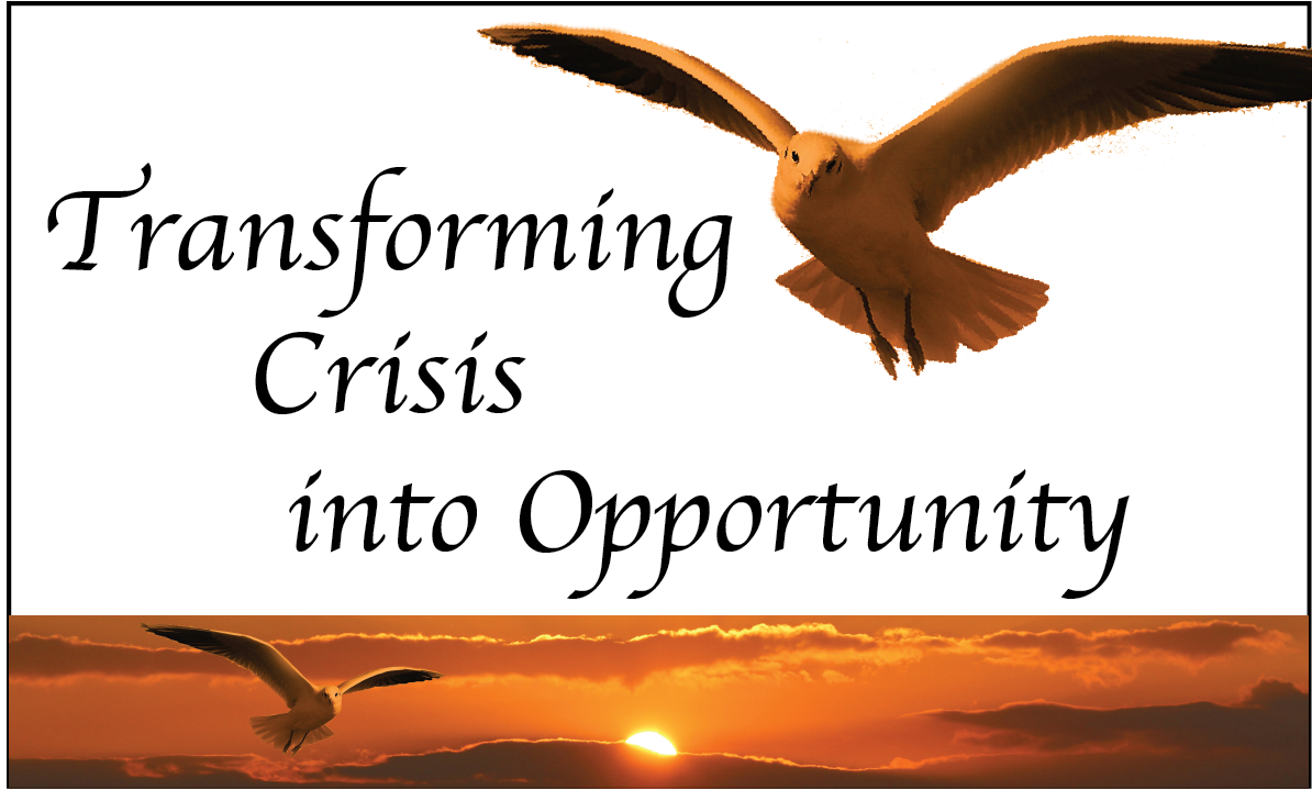 Transforming Crisis into Opportunity
