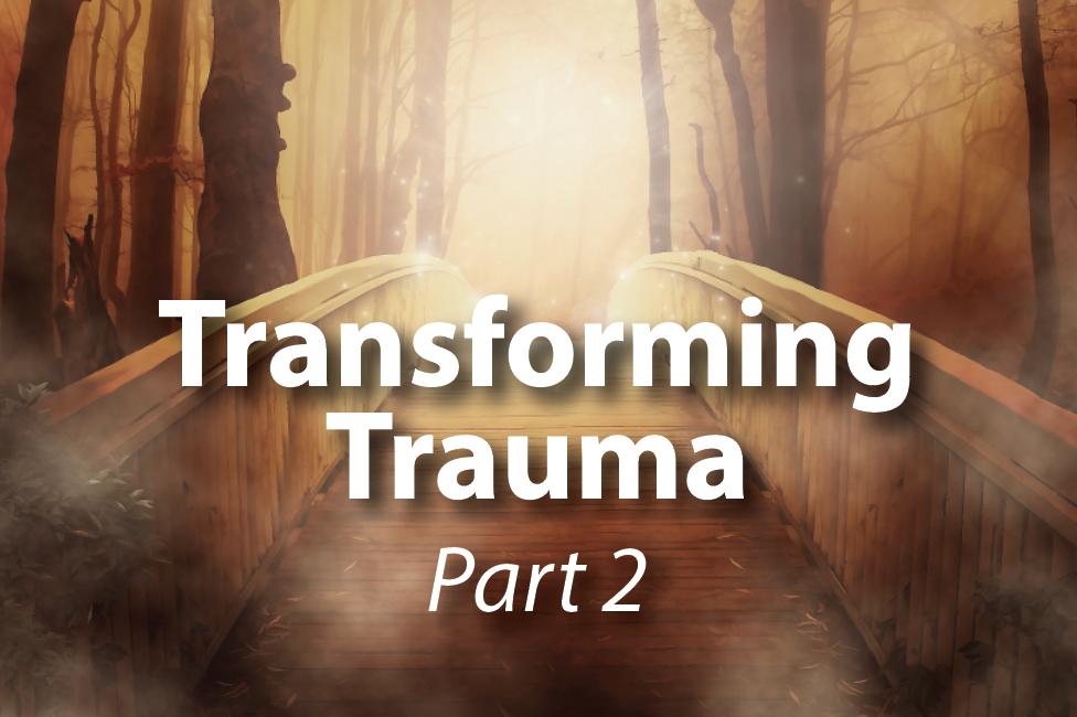 Transforming Trauma 2 Evaluation Copy
