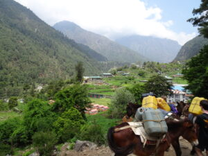 Everest Base Camp: the green Dudh Koshi Valley surrounds the raging waters below