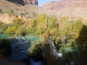 Fifty Foot Falls and Little Navajo Falls have large shallow pools.