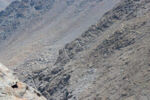 Mt. Whitney hike, 99 switchbacks