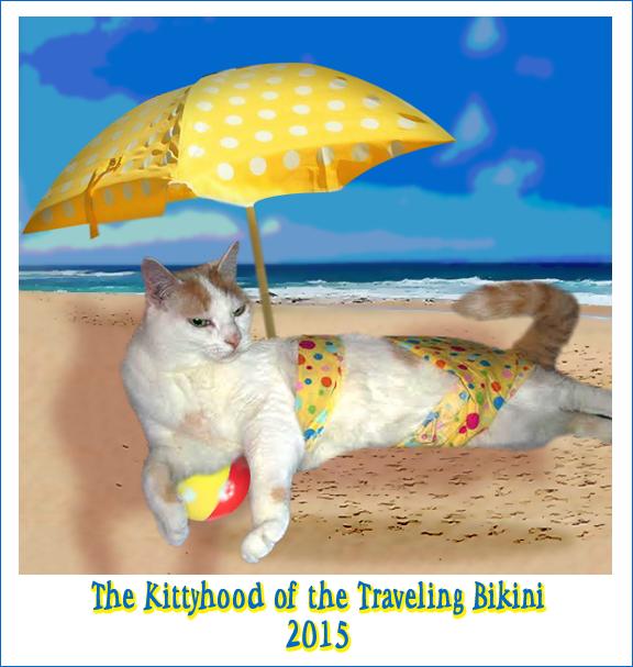 Phoebe's Traveling Bikini (1)