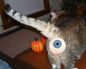 eyeballKaTwo