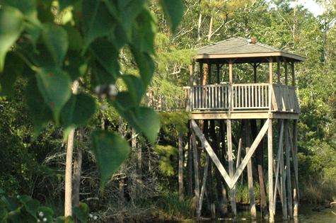 Bayou Observatory