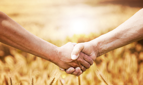 Land managers help landowners and tenants