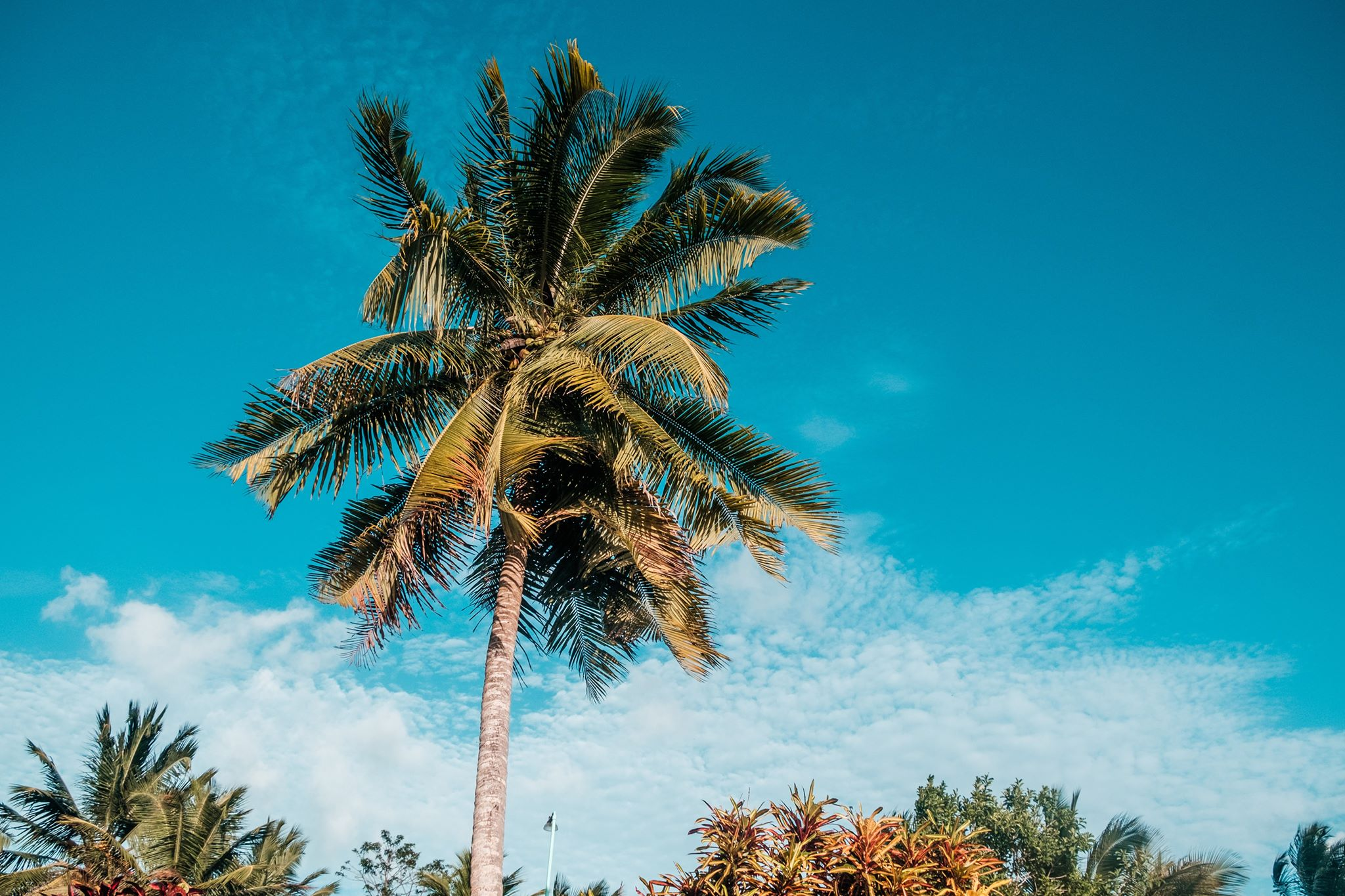 Ambergris Caye Belize Is The Best Place To Retire Right Now