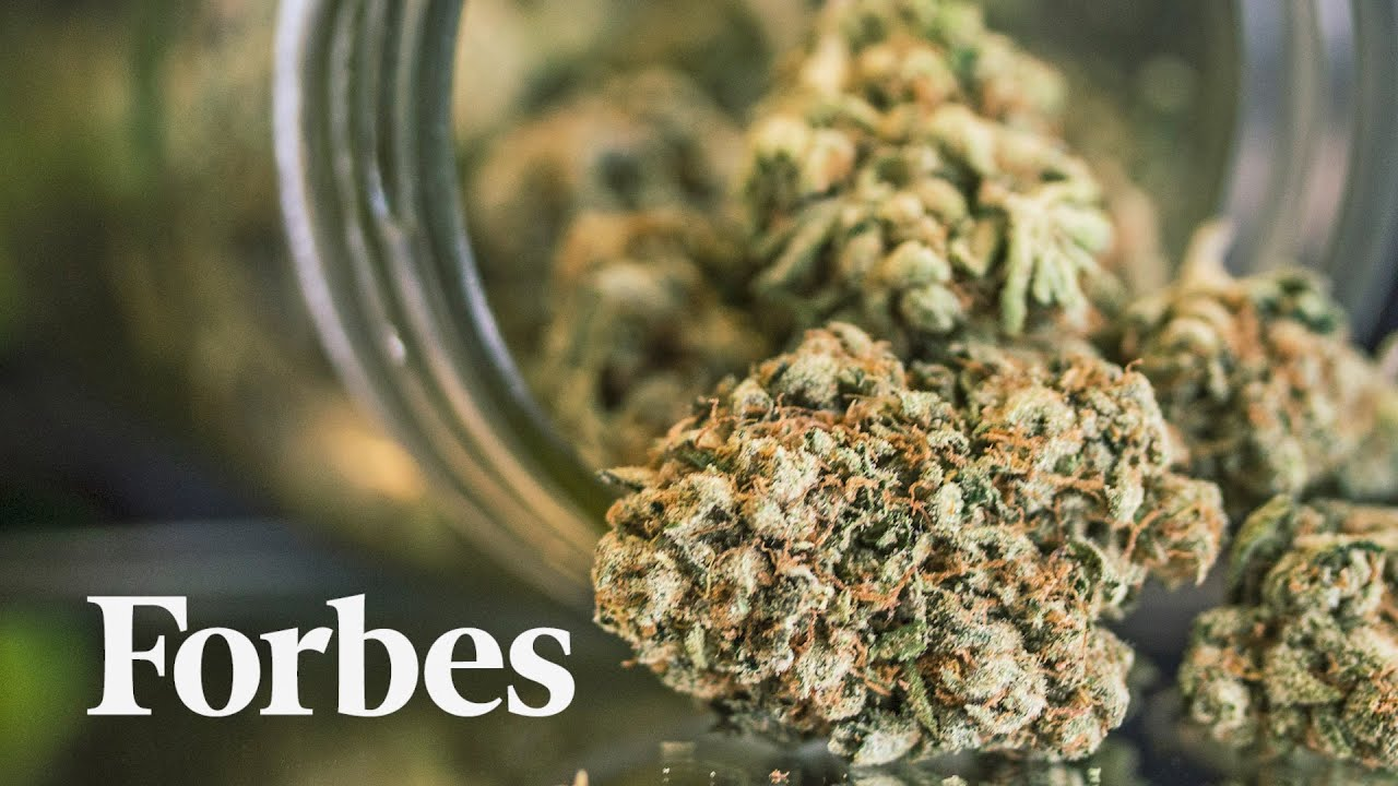 Cannabis and Coronavirus: How Pandemic Spending Patterns Are Shaping The Industry | Forbes