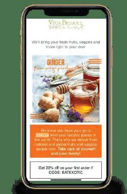 success Case: Vega Produce Email Marketing