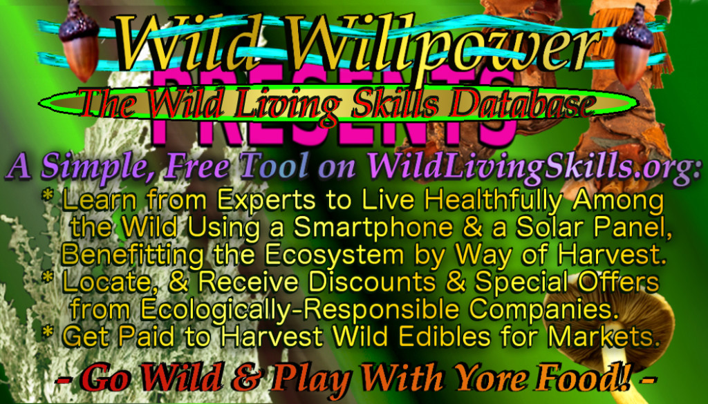 WildLivingSkills business card green