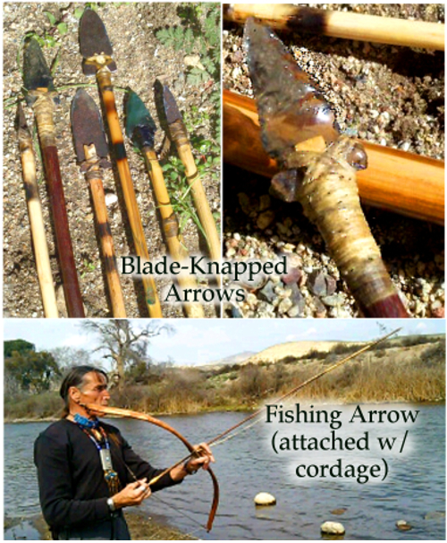 bows & arrows for site
