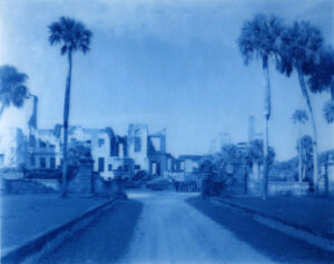 blue tinted photo of trees and road by emily gomez