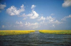 water and sky horizon