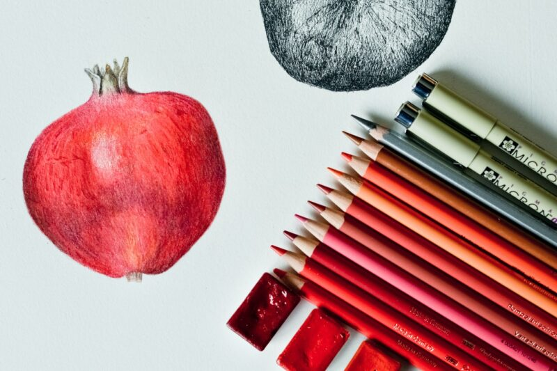 drawing of fruit with colored pencils