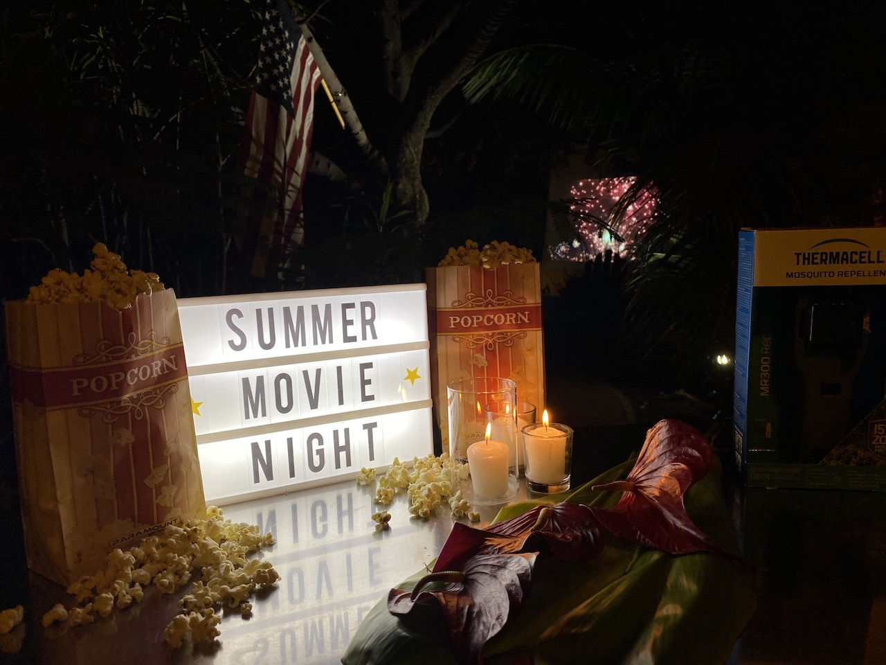 How to Create Your Own Marvelous Outdoor Movie Theatre