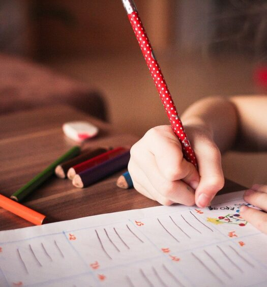 Tools to Balance Your Working and Kids Learning from Home