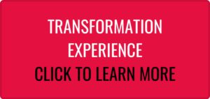 Transformation Experience