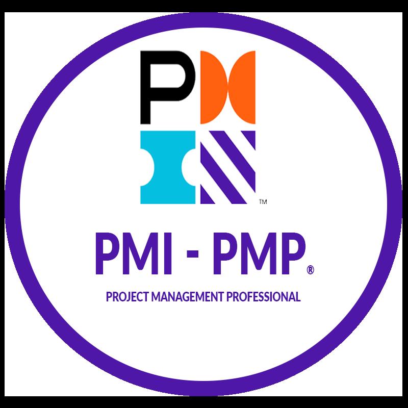 PMI PMP 2020 800800